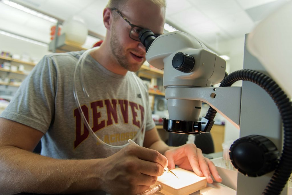 Student in Harrison Lab