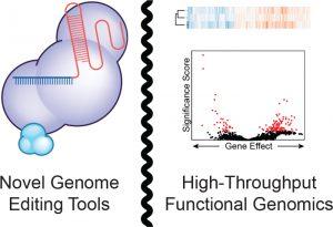 Cartoon for Functional Genomics Technology Development